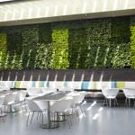Del Amo Fashion Center Cafes Patio Wall