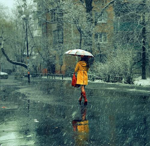 Los Angeles Winter Rain